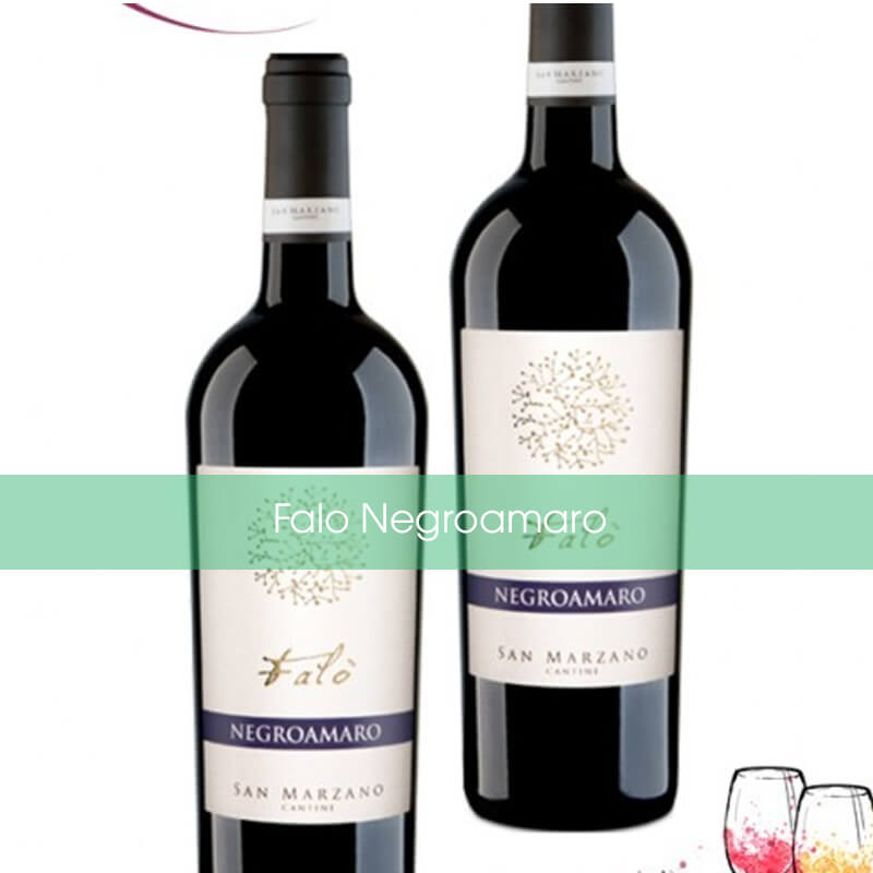 Rượu vang đỏ Falo Negroamaro