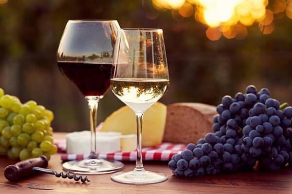 Nho làm rượu vang có đặc điểm gi
