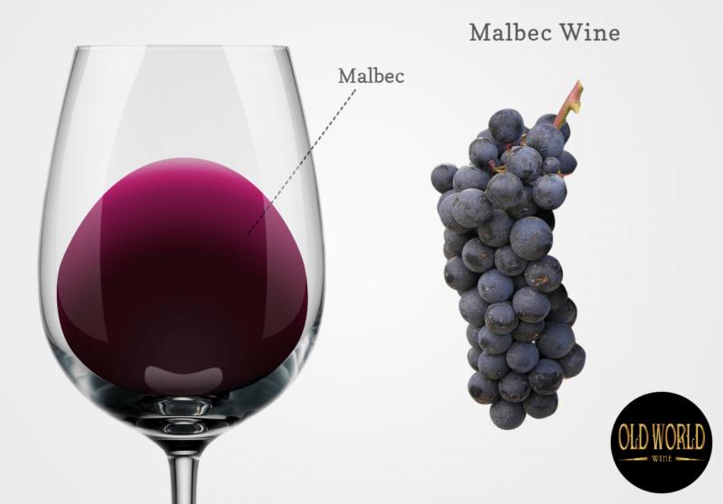 Rượu vang đỏ Malbec