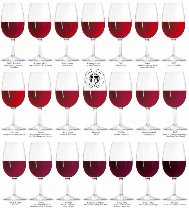 Bảng màu rượu vang đỏ phần 2