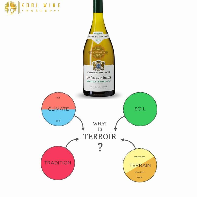 Yếu tố đầu tiên chính là Terroir