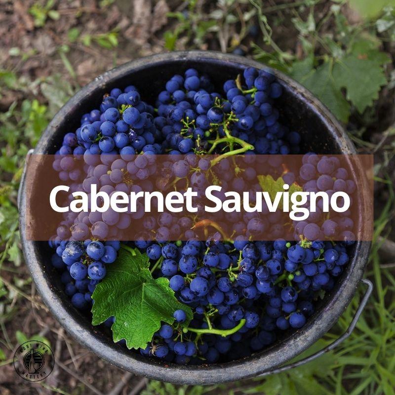 Cabernet Sauvignon - giống nho làm rượu vang đỏ ngon số 1