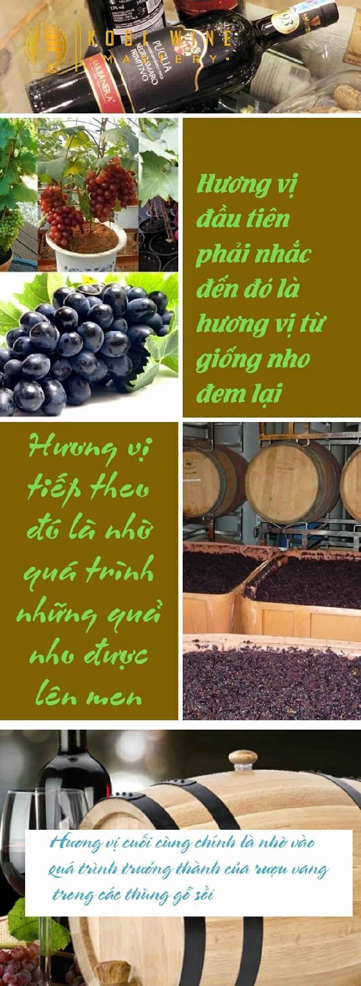 Hương vị của rượu vang ý sẽ như thế nào?