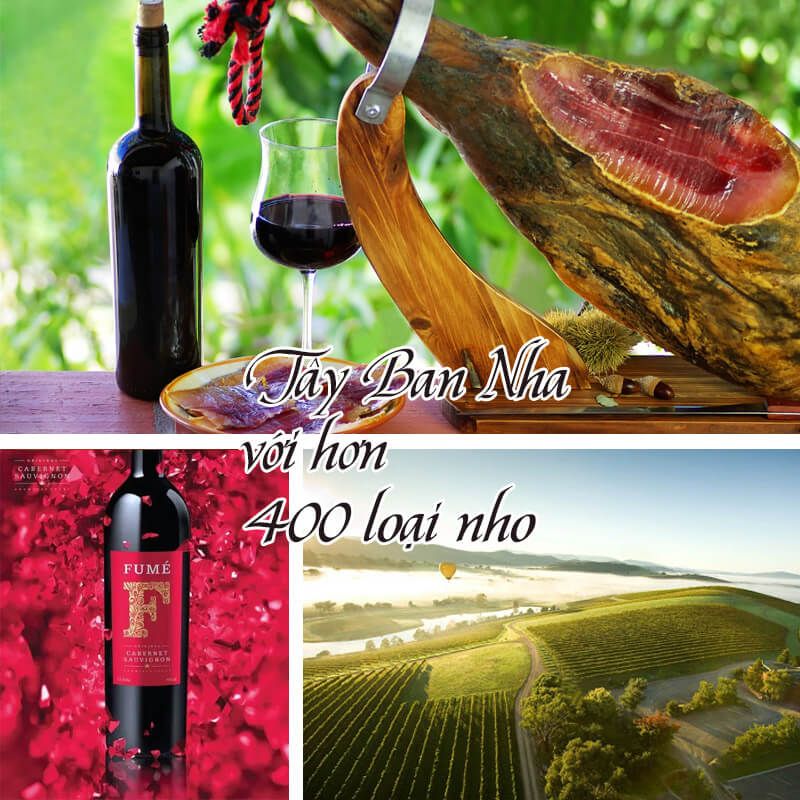 Lịch sử rượu vang Tây Ban Nha