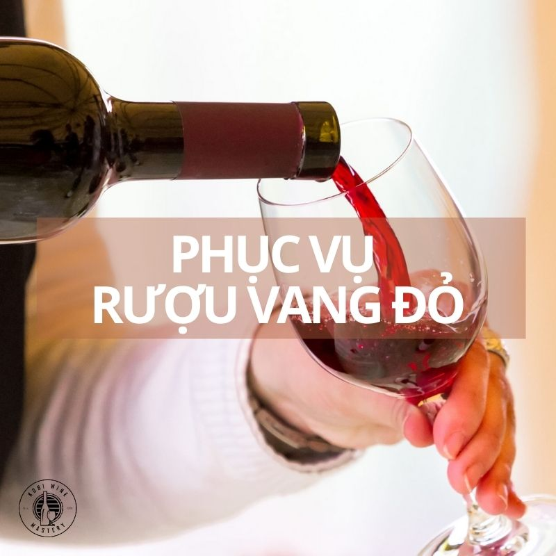 Phục vụ rượu vang đỏ