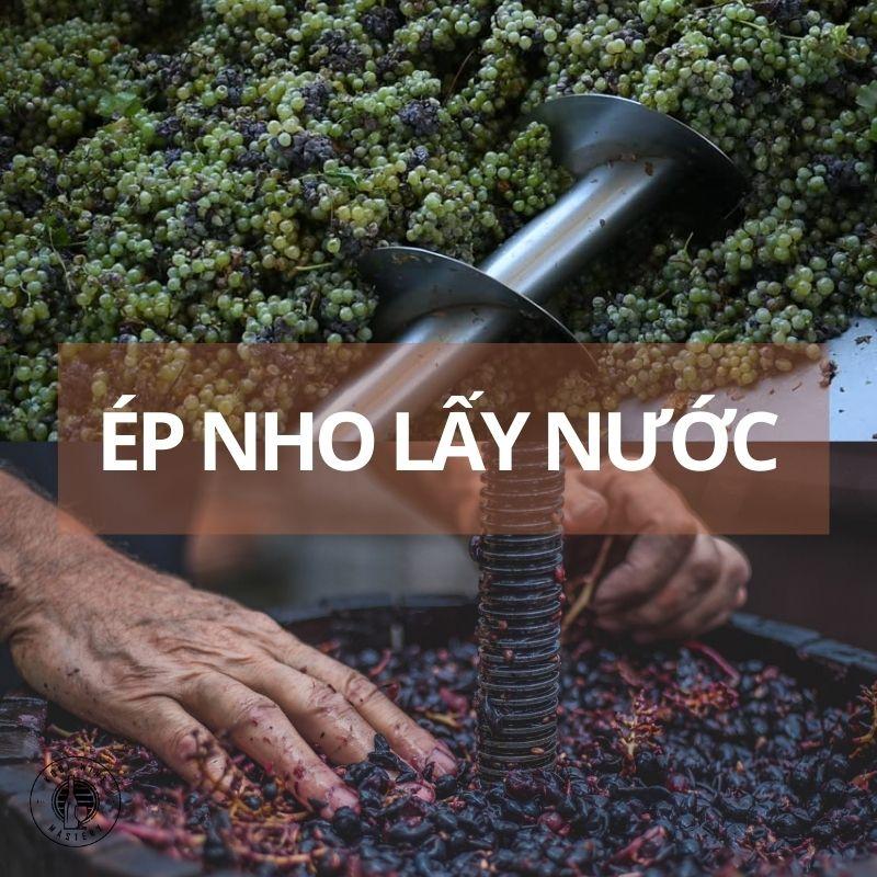 Quy trình ép nho lấy nước làm rượu vang