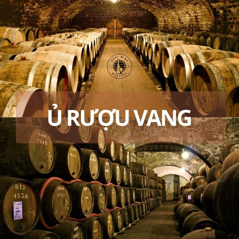 Quy trình ủ rượu vang