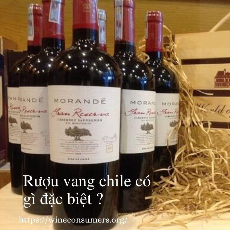Rượu vang Chile có gì đặc biệt