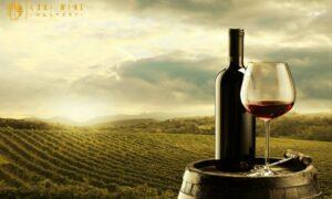 Rượu vang Pháp có lịch sử phát triển lâu đời