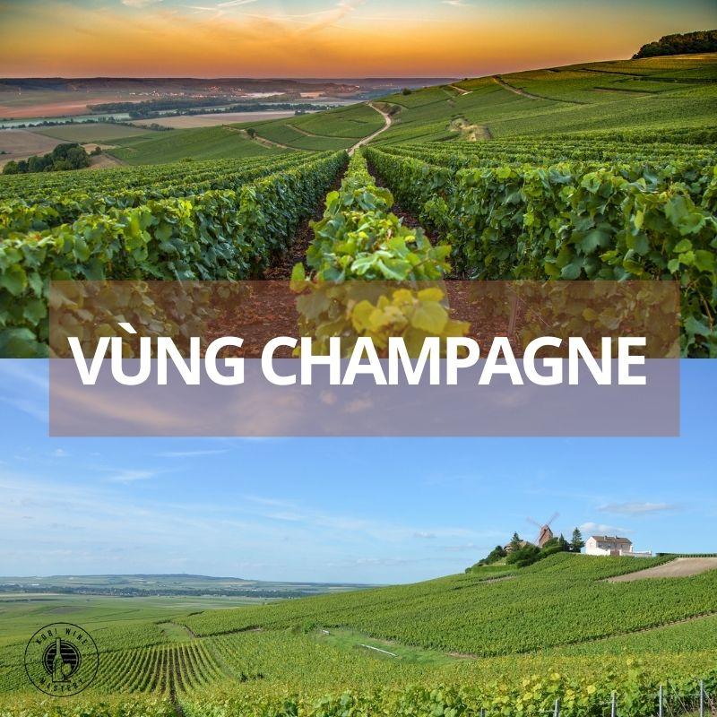 rượu vang pháp vùng champagne