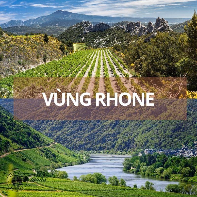 rượu vang pháp vùng rhone